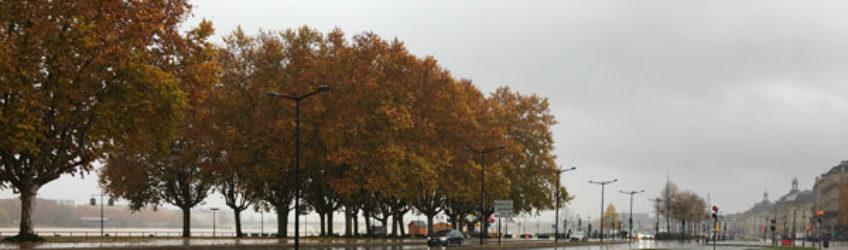 Touban Regénération au service des gazons du tram bordelais